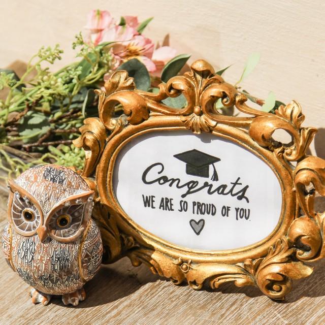 Cadou pentru absolvenţi Owl Fairytale